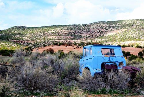 Fotos de stock gratuitas de abandonado, al aire libre, arbustos, camión