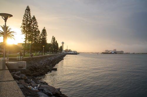 Gratis lagerfoto af aften, hav, landskab, lys