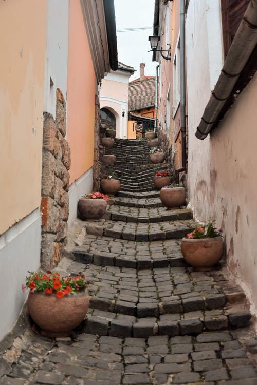 Photo of Empty Alley Stairway in Between Buildings