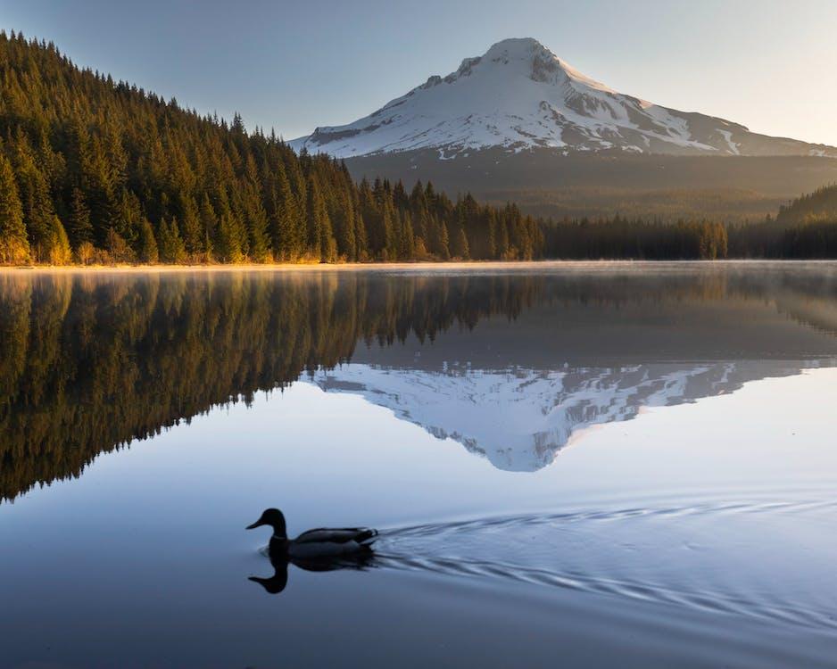 hora, jazero, krajina