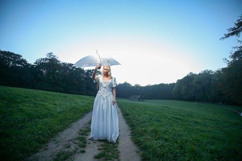 Immagine gratuita di alberi, donna, erba, moda