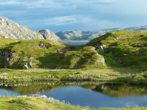 Foto profissional grátis de água, cênico, colina, grama