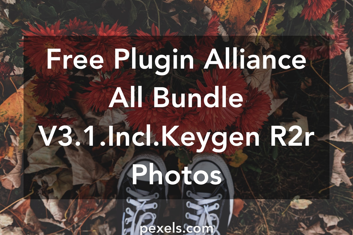 40+ Great Plugin Alliance All Bundle V3 1 Incl Keygen R2r