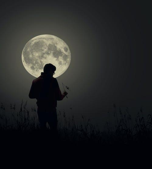 月圓, 灰階 的 免費圖庫相片