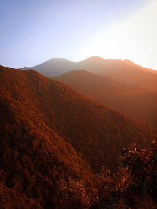 尼泊爾, 陽光, 頗富 的 免費圖庫相片