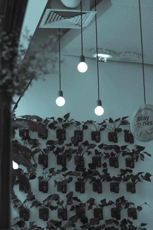 Gratis lagerfoto af arbejde, kaffe, lys
