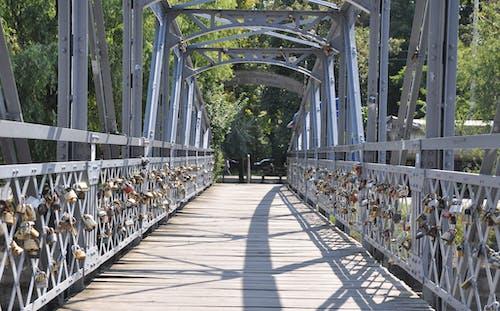 Bridge Against Trees