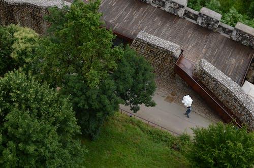 Fotobanka sbezplatnými fotkami na tému balóny, biela, hrad, letecký pohľad