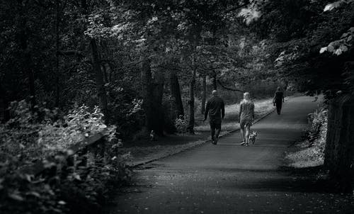 Monochrome Photography of People Walking on Park