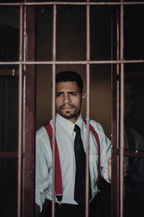 Безкоштовне стокове фото на тему «вікно, визирає, вираз обличчя, волосся на обличчі»