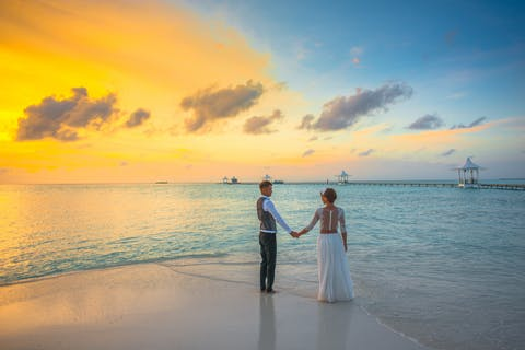 Man and Woman holding hands while Standing on the seashore
