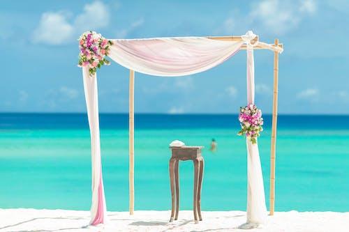açık hava, ada, Çiçekler, dalgalar içeren Ücretsiz stok fotoğraf