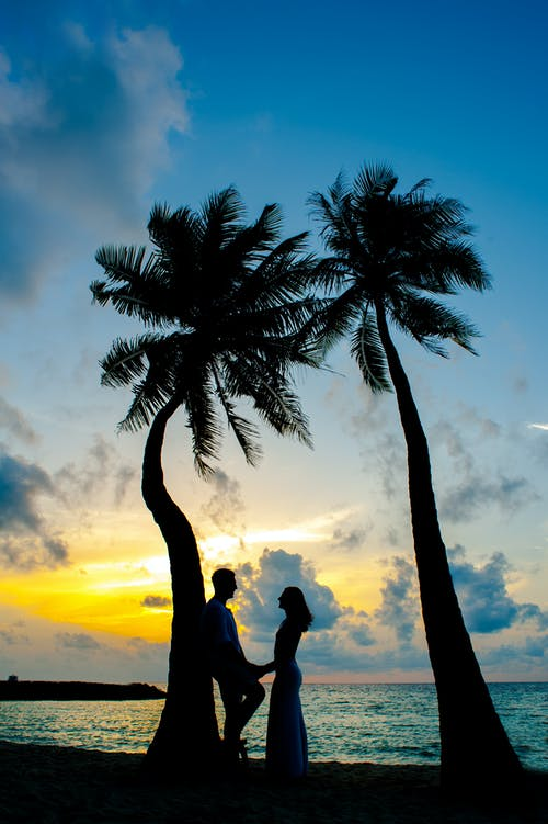 Man and Woman Near Coconut Trees