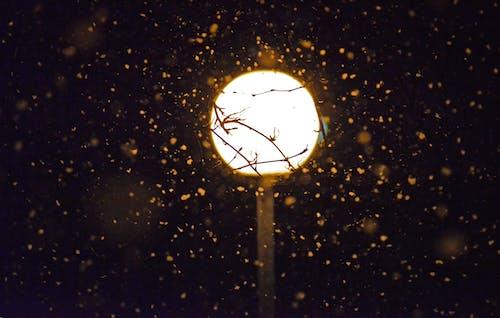 Kostnadsfri bild av glöd, gnistrande, kväll, ljus