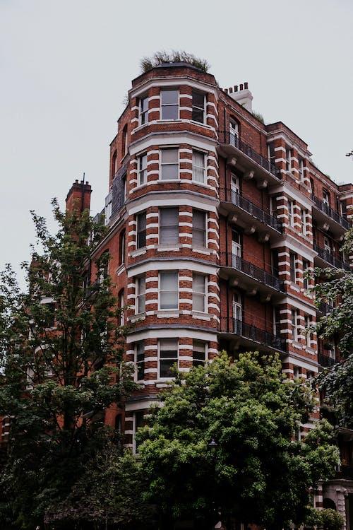 Základová fotografie zdarma na téma apartmány, architektura, budova, centrum města