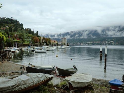Fotos de stock gratuitas de barcos, muelle, niebla, paisaje