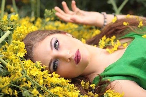Gratis lagerfoto af afslapning, bane, blomster, close-up