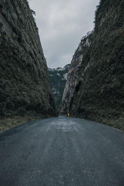 คลังภาพถ่ายฟรี ของ ถนน, ยางมะตอย, เนินเขา
