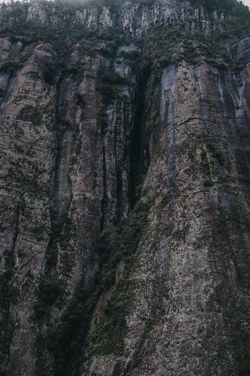 Ingyenes stockfotó erózió, fák, festői, fű témában