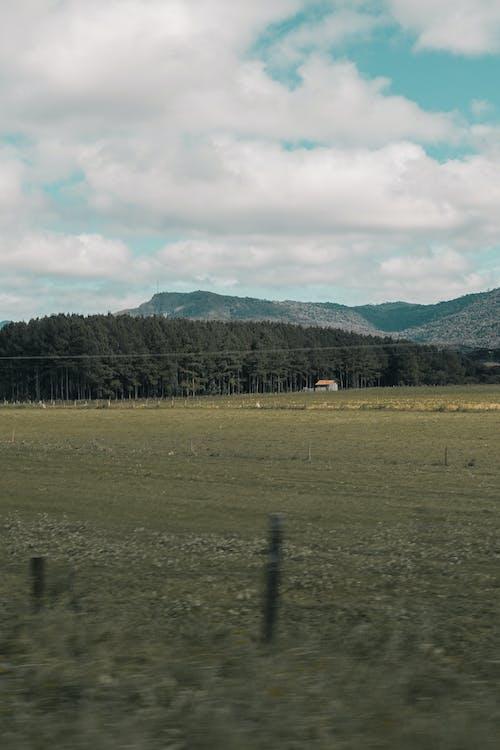 Gratis stockfoto met akkerland, bergen, boerderij, bomen