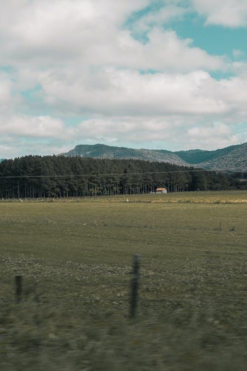 akkerland, bergen, boerderij