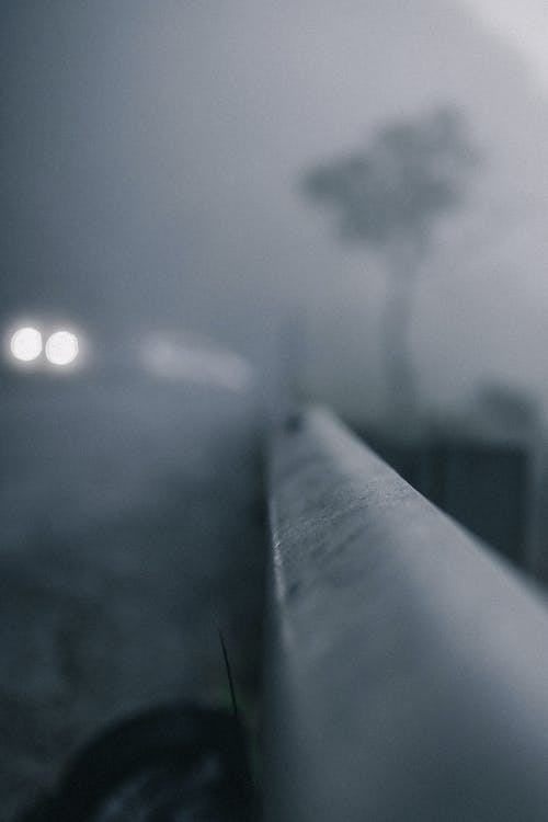 Photos gratuites de arbre, brouillard, brouiller, brumeux