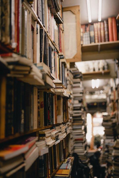 Бесплатное стоковое фото с библиотека, запасы, книги, книжные полки
