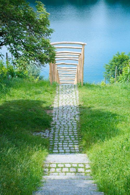 Foto profissional grátis de estrutura, grama, lago, parque