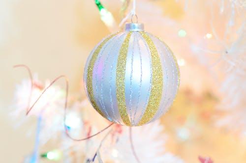 Foto d'estoc gratuïta de arbre, art, blanc, bola