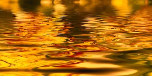açık, akşam, altın, altın rengi içeren Ücretsiz stok fotoğraf