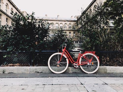 açık hava, bisiklet, bisiklet binmek, bisiklet park yeri içeren Ücretsiz stok fotoğraf