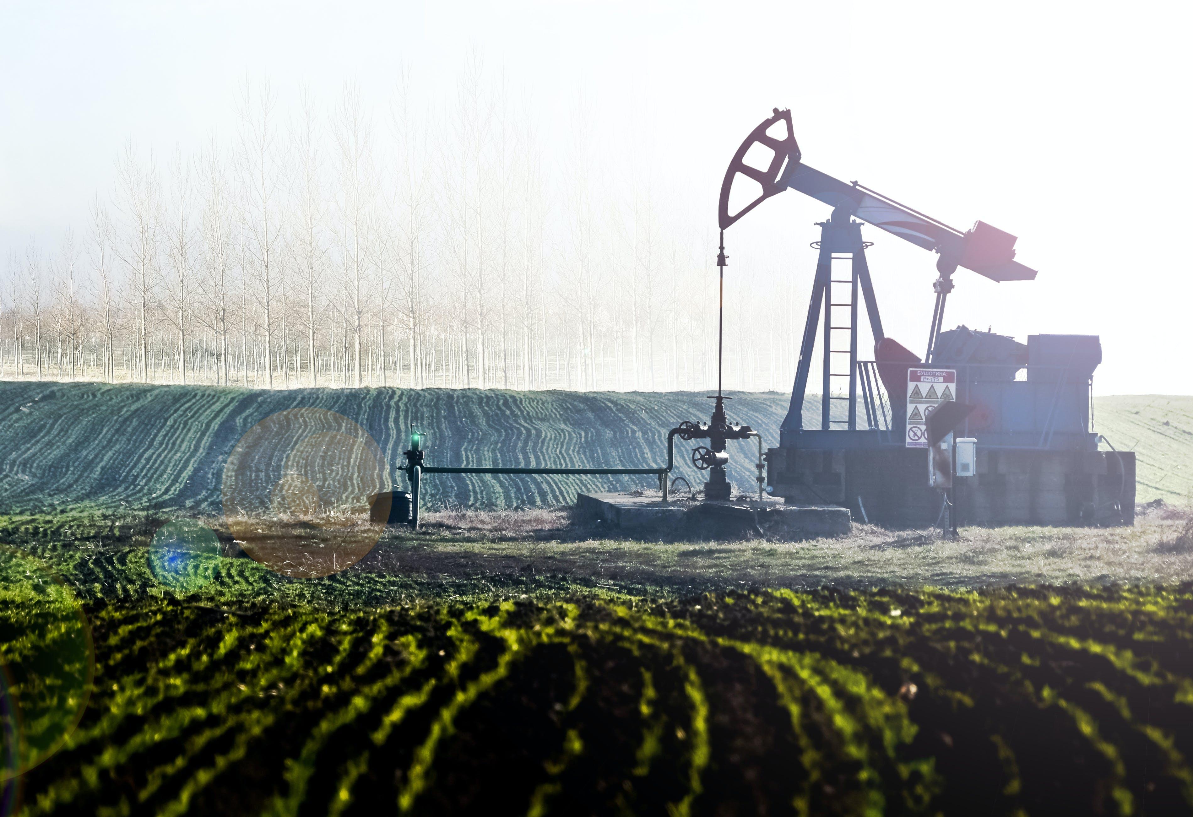 Gray Oil Mine