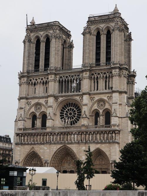 ノートルダム, パリ, フランス, 大聖堂の無料の写真素材