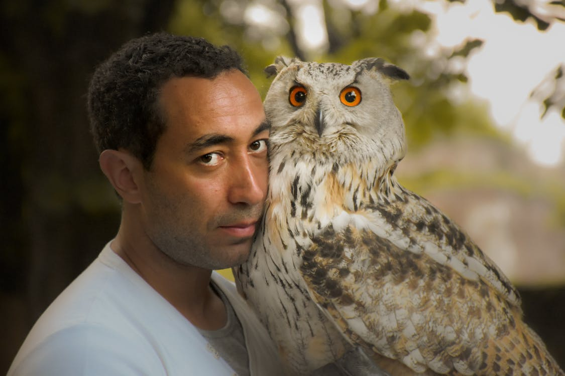 Person Holding A White Owl