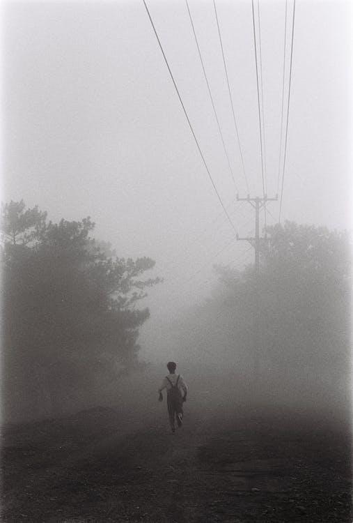 pexels photo 2557709 - Fotografía En Blanco Y Negro