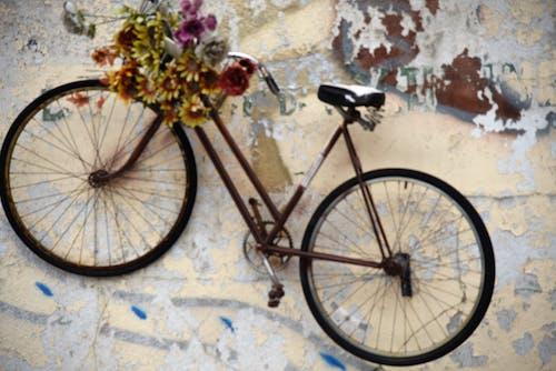 Imagine de stoc gratuită din bicicletă, floare, perete, zid de cărămidă