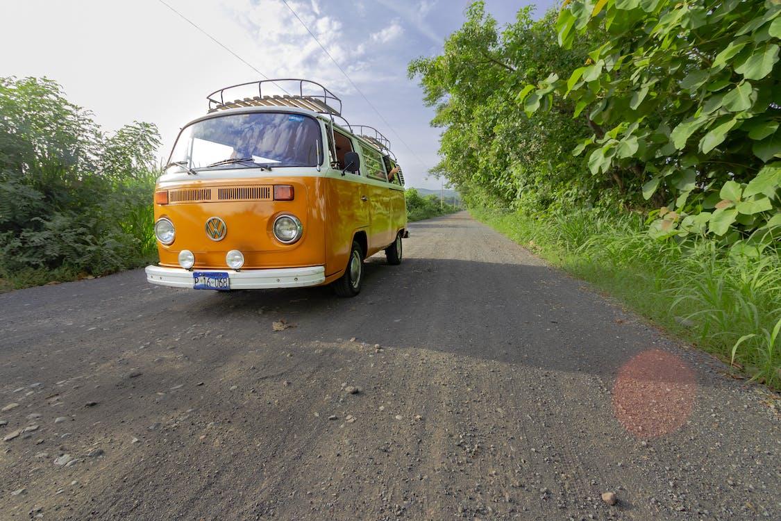 camping, combi, dirt road