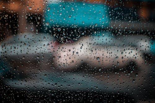 H2O, 下雨, 天氣, 天氣好 的 免费素材照片