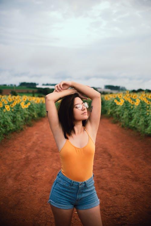ayçiçeği, ayçiçeği tarlası, ayçiçekleri içeren Ücretsiz stok fotoğraf