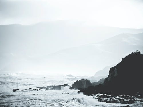 Grayscale Photography of Shore