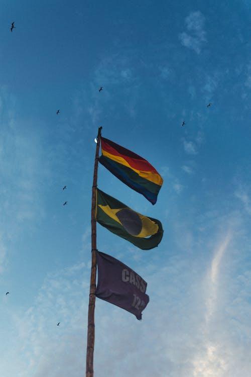 a l'aire lliure, alt, banderes