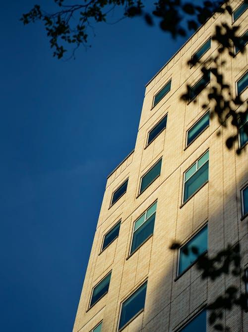 ローアングルショット, 前面, 建物, 建物の外観の無料の写真素材
