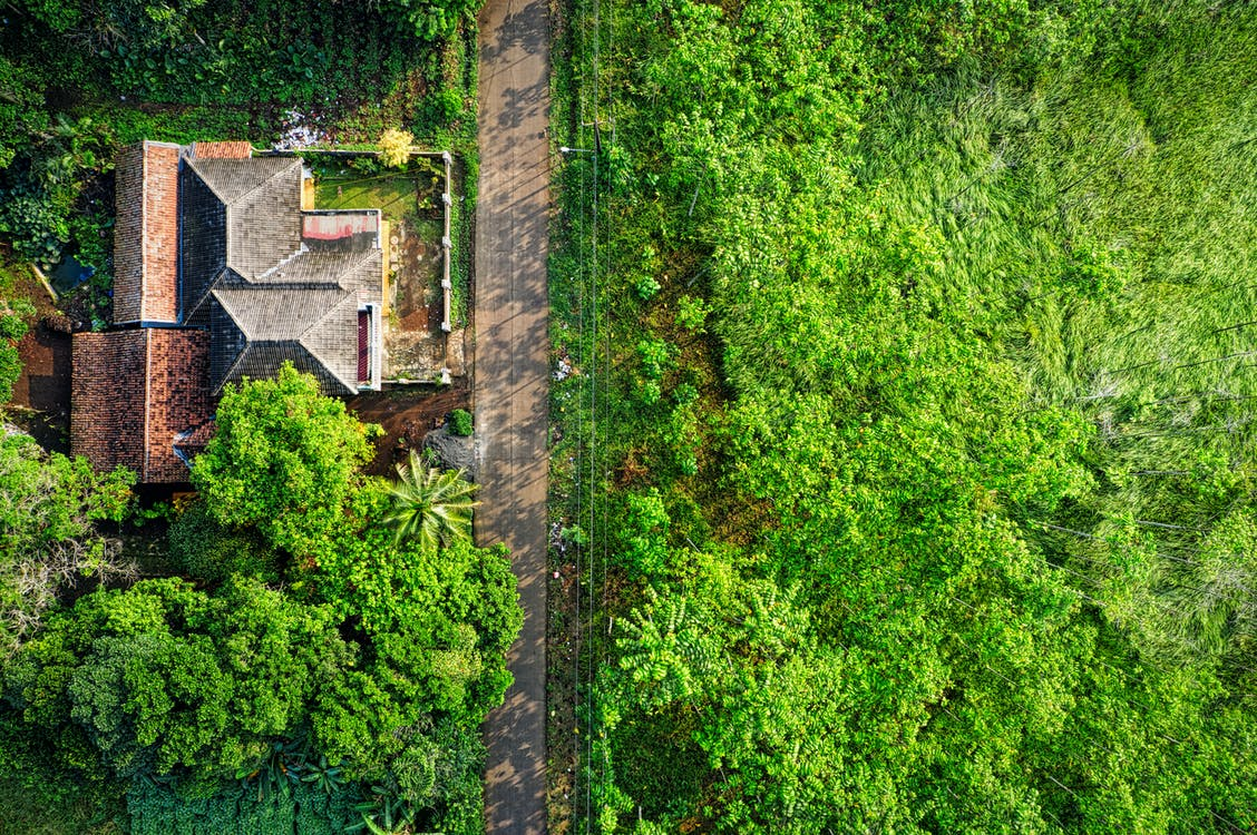 Aerial Photo of Brown House Surrounded by Green Leafy Trees