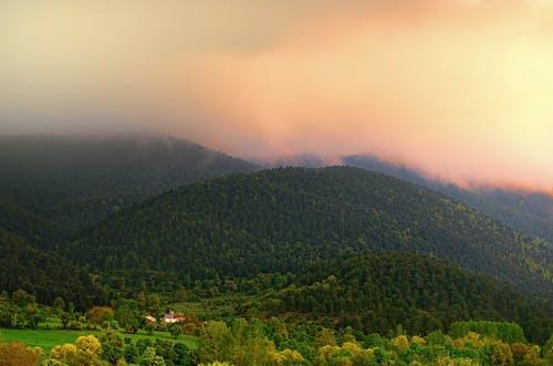 Imagine de stoc gratuită din junglă, munte, nor, peisaj