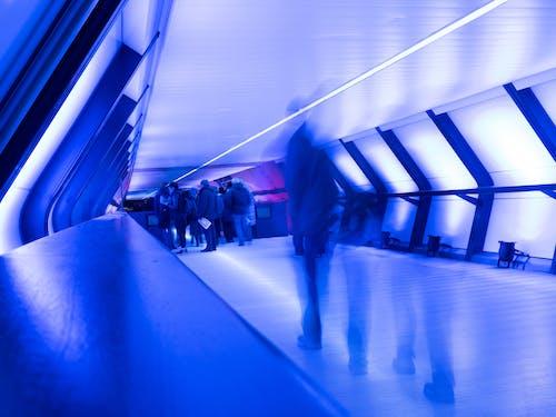 倫敦, 橋, 步行, 藍色 的 免费素材照片