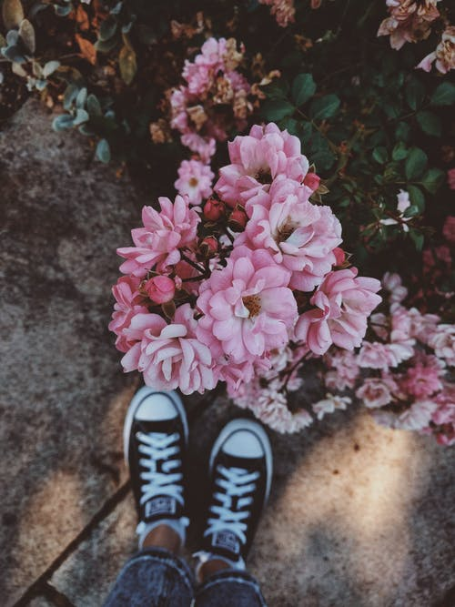 Person Wearing Black-and-white Sneakers Standing in Front of Pink Flowers