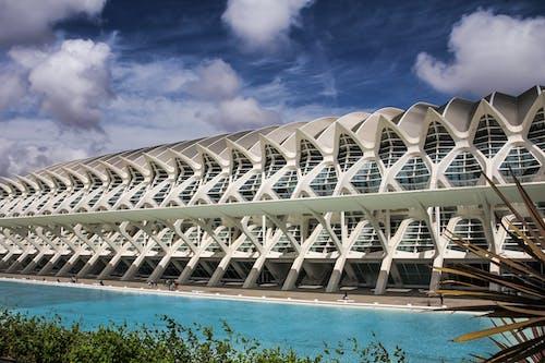 Kostnadsfri bild av arkitektur, avslappning, bassängkant, byggnad