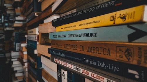 Foto stok gratis buku-buku, Perpustakaan, pustaka