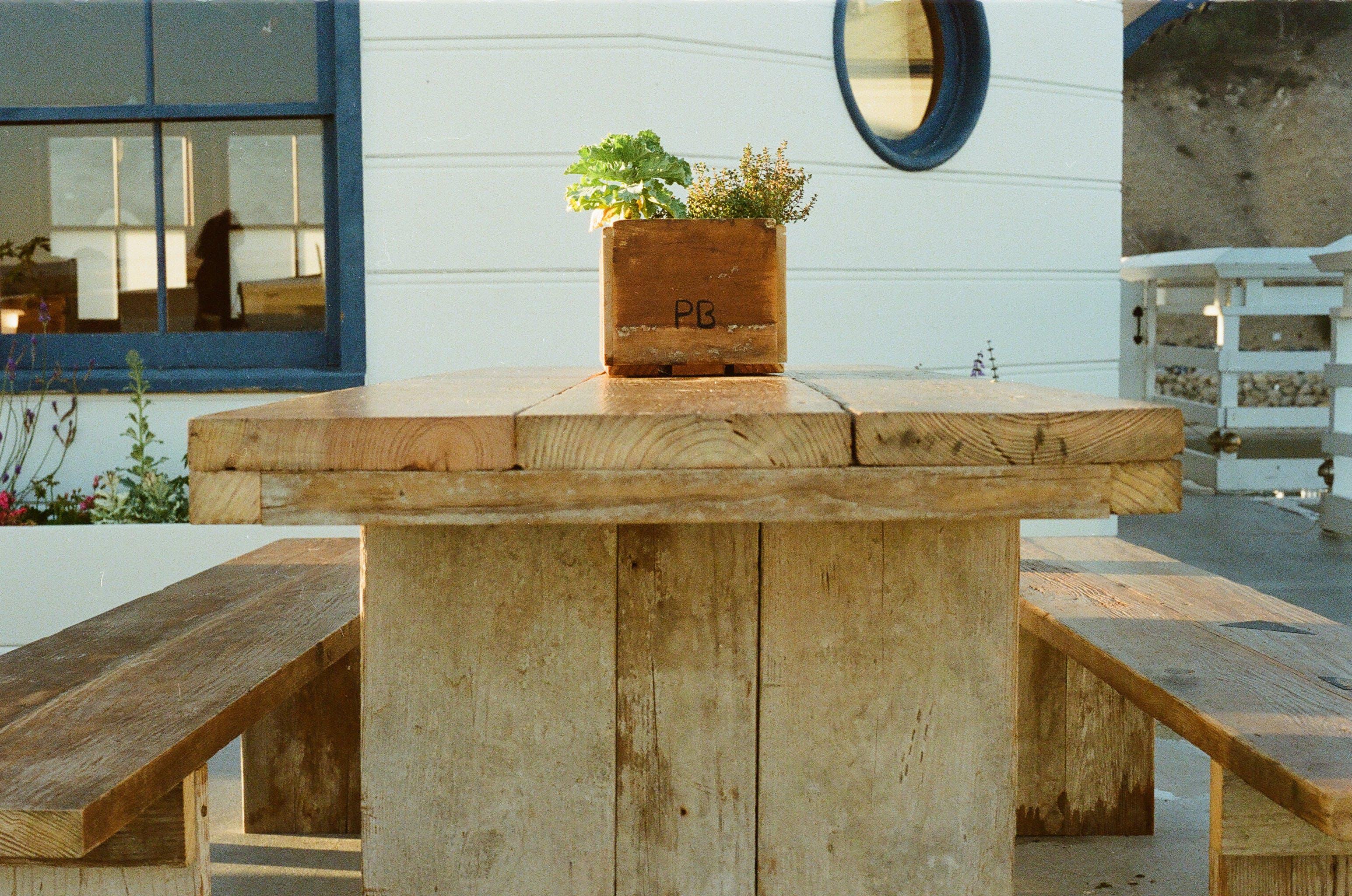 bench, flowerpot, seat