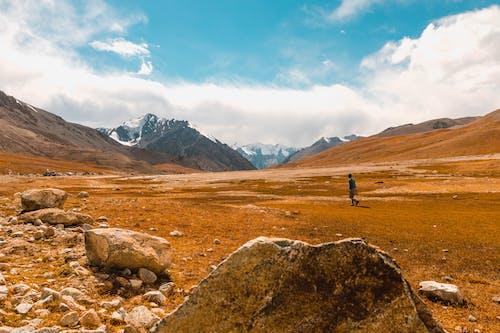 경치, 경치가 좋은, 메마른, 모험의 무료 스톡 사진